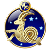 Las flores según tu signo del zodiaco Capricornio
